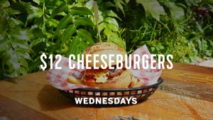 Wednesday-Cheeseburger-TV-Screen-V4